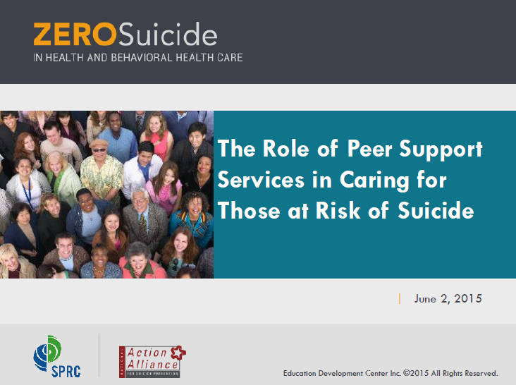 The Role of Peer Support Services