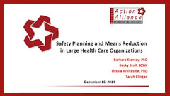 Safety Planning and Means Reduction in Large Health Care Organizations