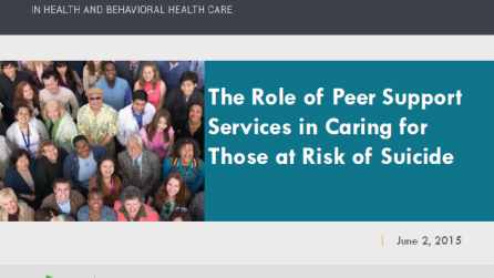 Role of Peer Support Services in Caring for Those at Risk of Suicide